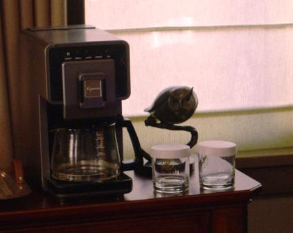 Coffee maker and owl